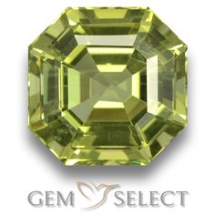 GemSelect features this natural untreated Apatite from Madagascar. This Green Apatite weighs 6.5ct and measures 11 x 10.9mm in size. More Asscher Cut Apatite is available on gemselect.com #birthstones #healing #jewelrystone #loosegemstones #buygems #gemstonelover #naturalgemstone #coloredgemstones #gemstones #gem #gems #gemselect #sale #shopping #gemshopping #naturalapatite #apatite #greenapatite #octagongem #octagongems #greengem #green Green Gemstones, Loose Gemstones, Natural Gemstones, Buy Gems, Asscher Cut, Gem S, Gemstone Colors, Madagascar, Shades Of Green