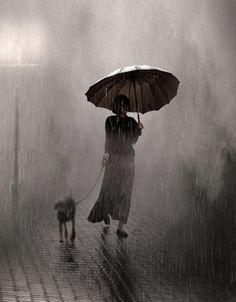 wet day dog walk