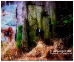 """Creeping"" © Lori J. Southall dba Bramble On Digital Art + Photography"