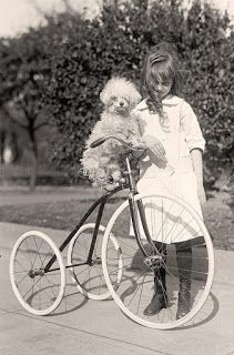 View from the Birdhouse - Dear Abby: Join in to Share Pet Memories.  We would love to feature YOUR pet memories at the blog.  Featured photo, above: vintage photo of little girl and poodle on a bicycle.