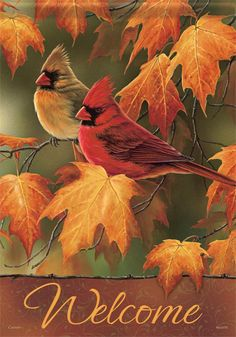 Fall Cardinal Decorative Flag