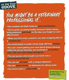 You might be a veterinary professional if...