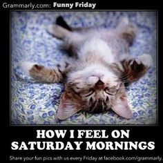 Saturday ? -Well Every Day!!