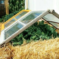 Here, you'll find our best ideas and plans for DIY cold frames, greenhouses, hoop houses, low tunnels, cloches and other tools that can keep the harvests coming throughout fall and beyond.