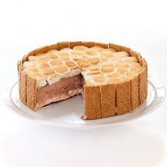 S'mores ice cream cake!