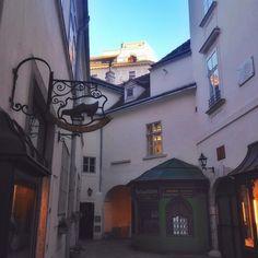 1000things.at entführt euch auf einen Spaziergang durch die schönsten Geheimgänge und Innenhöfe in Wien. Viel Spaß und lasst euch verzaubern! Planet Coaster, Heart Of Europe, Austria Travel, Vienna Austria, Stuff To Do, Travel Tips, Beautiful Places, In This Moment, Adventure