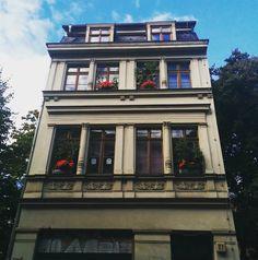 Доброе утро!цветы на карнизе так меняют атмосферу и восприятие самого здания. #greenliving #berlin #mitte #flowers #цветы #architecture #architecturelovers #Берлин #urbangardening #17komnat