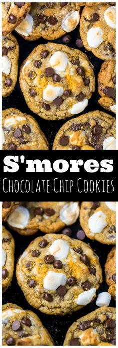 S'mores Chocolate Chip Cookies are thick, chewy, and loaded with so much gooey goodness! S'mores Chocolate Chip Cookies are thick, chewy, and loaded with so much gooey goodness. Easy to make and no chilling required! Just Desserts, Delicious Desserts, Dessert Recipes, Yummy Food, Good Cookie Recipes, Snack Recipes, Camping Desserts, Cookie Ideas, Vegan Recipes