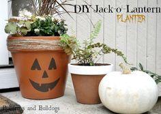 Jack O' Lantern Planter