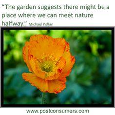 Gardening Quote: Michael Pollan