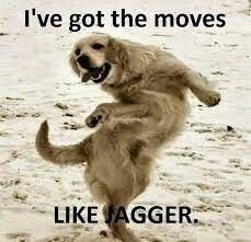 Your dance moves are spot on!