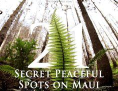 21 Secret Peaceful Spots on Maui http://www.prideofmaui.com/blog/maui/secret-peaceful-spots-hawaii.html