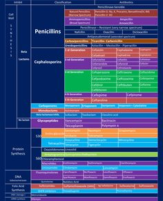 Proper Antimicrobial Spectrum Of Activity Chart Antibiotics Sensitivity Chart Antibiotic Spectrum Coverage Chart Pediatric Dosing Chart For Antibiotics Pharmacy School, Medical School, Pharmacy Humor, Bola Medicinal, Np School, Family Nurse Practitioner, Pharmacology Nursing, Emergency Medicine, Nursing Notes