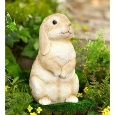 Find the perfect statues & sculpture for your garden or outdoor patio on Wayfair. Browse through a large selection of beautiful statues & sculptures! Gnome Statues, Garden Statues, Outdoor Statues, Black Labrador Retriever, Cat Statue, Orange Tabby Cats, Flamingo Bird, Cute Bunny, Indoor Outdoor