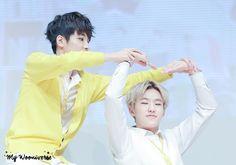 Wonwoo and Hoshi ❤ #gif