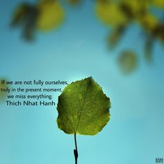 If we are not fully ourselves, truly in the present moment, we miss everything. Buddhist Quotes, Spiritual Quotes, Leaf Quotes, Thich Nhat Hanh, Life Decisions, Meaning Of Life, Tao, Awakening, Gratitude
