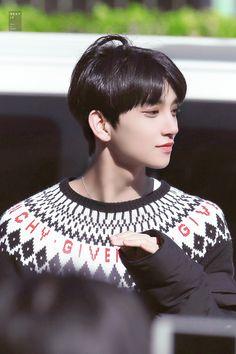 Omaigad why you so freaking perfect Jisoo Seventeen, Joshua Seventeen, Seventeen Memes, Seventeen Debut, Jeonghan Seventeen, Woozi, Wonwoo, Seungkwan, Vernon