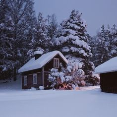 Swedish cottage in winter