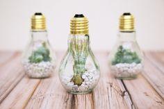 Gallery* Lamp-Déco: l'arte di decorare e riutilizzare le lampadine. Lampo di genio, ecco come arriva l'illuminazione! Prendi spunto dalla nostra gallery per decorare e riutilizzare le vecchie lampadine. Tante curiose idee di crafting per il tuo riciclo creativo! Guardare per credere! WWW.ORIZZONTENERGIA.IT #RAEE #Riciclo #Smaltimento #Ambiente #FaiDaTe #DIY #Bricolage