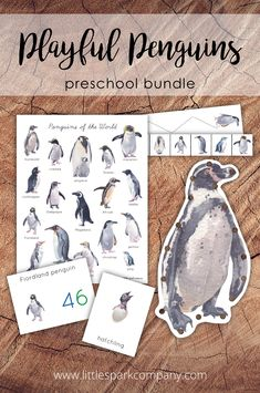 This 140 page bundle was created to complement your study of penguins with your 3-6 year old child(ren). Some activities will be best for younger children while others have been created for older children to allow this bundle to grow with your child, or to work for children of different ages. It contains 14 interactive learning activities that your little spark will surely enjoy. Montessori Homeschool, Montessori Toddler, Preschool Math, Learning Activities, Bank Games, Penguin Species, Lacing Cards, Interactive Learning, Montessori Materials