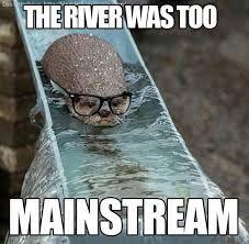 otter meme - Google Search
