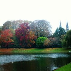 Stadspark on fall