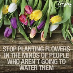 Stop planting flowers in the minds of people who aren't going to water them.