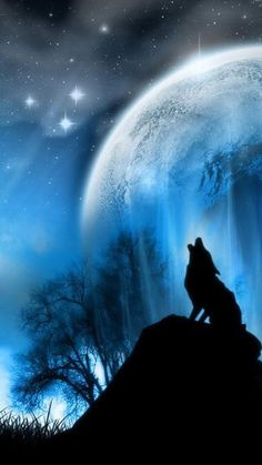 Image result for paintings and artwork of wolf with moon and stars in its eyes aurora borealis