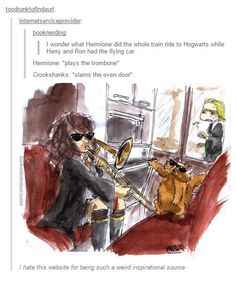 I'll excuse the fact that Hermione didn't have Crookshanks when they took the flying car.....cuz this is adorable