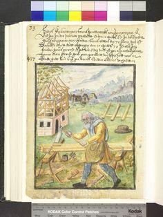 Amb. 317b.2° Folio 37 verso
