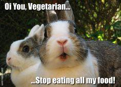 Those darn vegetarians. LOL! (11/10/16)