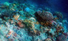 Águas de Pontal: Mineração subaquática é tendência, mas e os riscos...