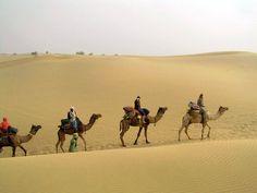 Discover Rajasthan Tour Duration : 20 Nights / 21 Days Destinations Covered : Delhi - Agra - Fatehpur Sikri - Jaipur - Pushkar - Ranthambore - Kota - Bundi - Chittorgarh - Bijaipur - Udaipur - Ranakpur - Kumbhalgarh - Jodhpur - Jaisalmer - Bikaner - Mandawa - Delhi.