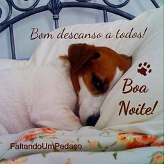 #boanoite #noite #frases #pensamentos #reflexão #pet #dog Good Night, Juma, Gifs, Stickers, Inspiration, Good Night Msg, Verses, Pictures, Wish