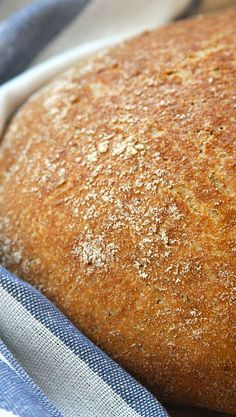 Whole Wheat No-Knead Bread