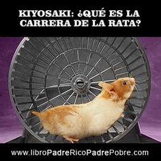 ¿QUÉ ES LA CARRERA DE LA RATA, DE KIYOSAKI EN PADRE RICO PADRE POBRE?. http://elcontadorvirtual.blogspot.com.es/2011/03/8-errores-tontos-que-hacen-las-personas.html