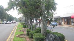 Jimmy Davis Boulevard (Main Street), Jonesboro, Louisiana