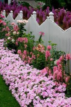 French Cottage - Type - What a beautiful flower Garden in front of and behind this charming fence. - My Cottage Garden Beautiful Flowers Garden, Beautiful Gardens, Beautiful Beautiful, Pretty Flowers, Purple Flowers, Beautiful Pictures, Plantas Indoor, Garden Cottage, Garden Gates