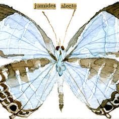Metallic Cerulean Butterfly [Jamides alecto]