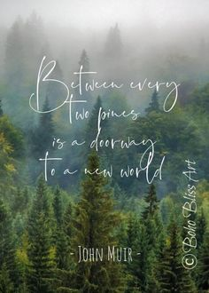 beauty Life nature - John Muir Quote: Between every two pines there is a doorway to a new world. Gift for Nature Lovers! Life Quotes Love, Great Quotes, Quotes To Live By, Inspirational Quotes, Lovers Quotes, Quotes Quotes, Time Quotes, Motivational Quotes, Wisdom Quotes
