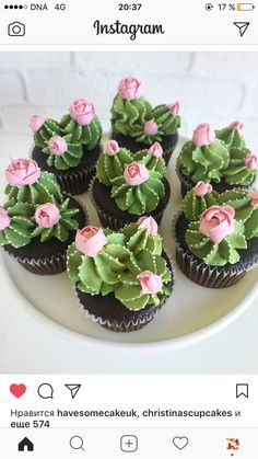 Oh my cupcakes! These are beautiful Oh my cupcakes! - Oh my cupcakes! These are beautiful Oh my cupcakes! These are beautiful Best Picture For cactus ja - Kaktus Cupcakes, Succulent Cupcakes, Cupcakes Flores, Garden Cupcakes, Cactus Cake, Cactus Cactus, Indoor Cactus, Cactus Vert, Cactus Food