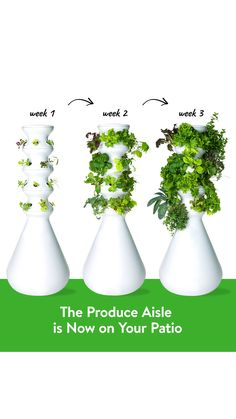 The self-watering, self-fertilizing hydroponic Farmstand makes it possible to grow farm-fresh produce from home without the experience, time, and space required for traditional gardening. It's better for you and the environment – the produce section that you can finally be confident in.  Growing your own food has never been easier.