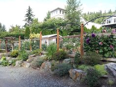 Shirley and Alf Collin's spectacular Whidbey garden inspired a Sammamish couple's new deer fence. I wrote about their garden (read the story here) a couple of years ago, and their fence caught Rob Gunther's eye. Deer Fence, Front Yard Fence, Fenced In Yard, Front Yard Landscaping, Landscaping Ideas, Horse Fence, Farm Fence, Fence Art, Front Yards