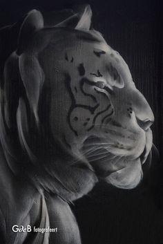 Panther, Graffiti, Lion Sculpture, Statue, Animals, Art, Art Background, Animales, Animaux