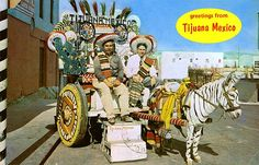 Greetings from Tijuana Mexico by Striderv, via Flickr