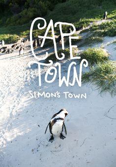 Cape Town / Cape Town: Simon's Town / The Fresh Exchange Boulder Beach, Safari, Le Cap, Miss Moss, Destinations, Most Beautiful Cities, Amazing Places, Belle Villa, Wanderlust Travel