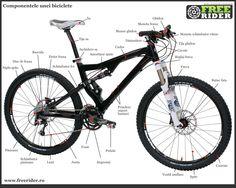 Biciclete pentru munte numai bune de o plimbare,Vei primi indicatii despre toate partile unei bicicleta.
