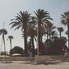 #Fontvieille  #montecarlo #monaco #france #richandfamous #europe #europe2015 #amazing #beach #boat #palmtrees #marina #water #love #location #beautiful by dani_x_x_x from #Montecarlo #Monaco