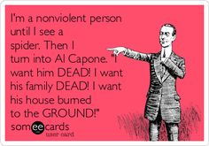 """I'm a nonviolent person until I see a spider. Then I turn into Al Capone. """"I want him DEAD! I want his family DEAD! I want his house burned to the GROUND!"""" 