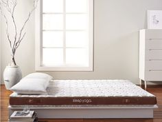 "Mattress ""concentrate"" helps improve sleep and posture health. A 1/3 of the cost of a luxury mattress with the same level of comfort."